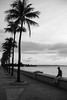 ...simple things in life (XanderG5) Tags: ocean cienfuegos pier male con palmtrees solo street streetphotography urban local monochrome blackandwhite photography travel photographer losangelesphotographer sigma 50mm sigma50mm