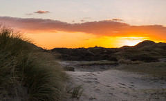 Sunset in the Dunes (romanboed) Tags: leica m 240 summilux 50 europe netherlands holland dutch wassenaar meijendal dunes grass sand north sea winter evening sunset sky landscape travel