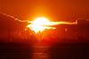 01/17 2017 SDQH0907 (@1008988) Tags: sigma foveon quattro sdquattroh sdqh sunrise tokyobay sigma150600mmf563dgoshsm|contemporary