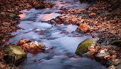 Down stream (Martin Snicer Photography) Tags: river flow nature longexposure ndfilter canon 50mm niftyfifty downstream photographer