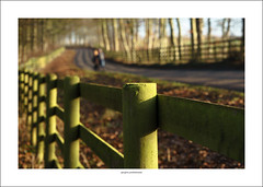 Out for a winter walk (G. Postlethwaite esq.) Tags: dof derbyshire radbournelane sonya7mkii beyondbokeh bokeh depthoffield fence frost fullframe lane leaves mirrorless photoborder selectivefocus trees walkers winter fencefriday hff