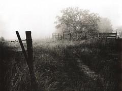 455 - Pasture Gate - Lith Print (Brad Renken) Tags: blackandwhite slavich unibrom fiber arista lith nebraska nebr neb ne bertrand pentax smc 14 trix pasture fence d76 11 gate 35mm phelps film