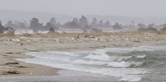 Water Stacking Up (brucetopher) Tags: storm snow water sea ocean bay tidal river tide surge wash rough stormy windy blow noreaster east eastern newengland beach snowing blizzard stormsurge surf wind gale erosion coast saltwater