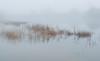 Cerknica Lake (happy.apple) Tags: dolenjejezero cerknica slovenia si cerkniškojezero cerknicalake autumn jesen fog slovenija