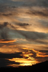 Pioggia finita. (SimonaPolp) Tags: sun sunset clouds sky winter february nature landscape silhouette cypresses yellow blue
