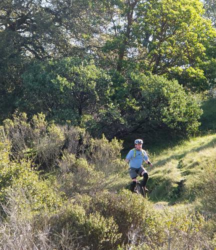 Shoreline Trail