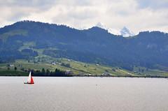 etzel_2015-05-24_13 (coyote-agile) Tags: schweiz switzerland suisse hiking schwyz einsiedeln wanderung randonnée 2015 sihlsee