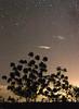 Desierto de la Tatacoa (Federico Carranza) Tags: longexposure sky silhouette night stars noche colombia cielo estrellas silueta estrella huila largaexposicion neiva desiertodelatatacoa latatacoa