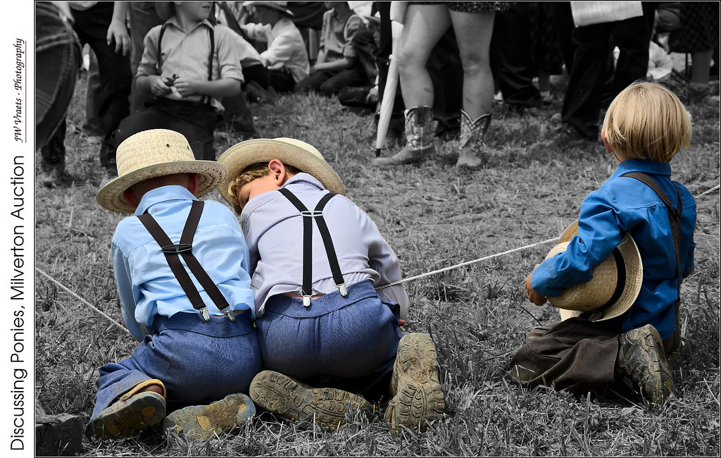 The World's Best Photos of amish and milverton - Flickr Hive