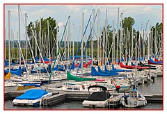 For The Love Of Boats (bigbrowneyez) Tags: trees sky canada love water beautiful lines marina boats harbor amazing fantastic afternoon details barche special frame belle ripples fabulous masts ottawariver delightful cornice marvellous carling silvana acua fortheloveofboats
