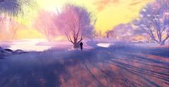 Early Morning. (Deva Westland) Tags: frisland winter winterlandscape misty morning