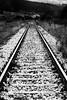 Iron Road (Mario Ottaviani Photography) Tags: iron road blackandwhite blackwhite biancoenero monochrome monocromo monocromatico mono train treno rotaie railway rail abruzzo sonyalpha sony transiberian scenic depth field depthoffield