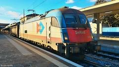 E190 313 Vicenza (nlovato96) Tags: e190 inrail es64u4 siemens 1216 treno eurosprinter guterzug zug stazione vicenza