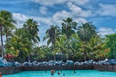 Agua Magic Waterpark wavepool (Pejasar) Tags: wavebook waterpark children water palmtrees tropical pool aguamagic guatemala
