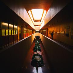 If I Am Gone and With No Trace (Thomas Hawk) Tags: america california franklloydwright marin marinciviccenter marincounty sanrafael usa unitedstates unitedstatesofamerica architecture escalator fav10 fav25 fav50