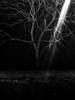 (willy vecchiato) Tags: monochrome monocramatico black white bw bianco e nero abstract mistery minimalist minimal contrast dark light 2017 fuji x100s