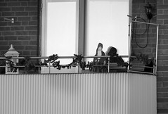 Tomte till Fotosöndag (Barbro_Uppsala) Tags: tomte fotosondag fotosöndag fs170115 uppsala juldagen blackandwhite santaclaus balcony balkong christmasday