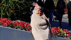 Lagüelillamaría (Landahlauts) Tags: maria woman mujer robado stealingsouls robandoalmas avenidadelaconstitucion granada andalucia sonrisa saludo fujifilmfujinonxc50230mmf4567ois fujifilmxa2 oldwoman greybeard elderly elder