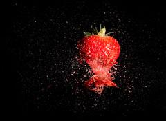 Exploding  strawberry (Wim van Bezouw) Tags: sony ilce7m2 macro pluto strawberry fruit explosion highspeed plutotrigger airgun blackbackground