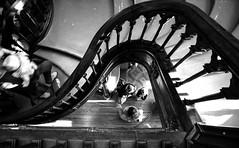 (Emilie Chvr) Tags: escalier noiretblanc librairie gens lello irmao porto portugal stairway blackandwhite bookstore people