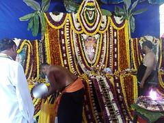IMG_20161211_151008 (bhagwathi hariharan) Tags: rangoli kolam nallasopara nalasopara rose pooja christmas 2016 festivals mumbai goregaon prithvilandproject 2017 celebrations lordshani lordayyappa