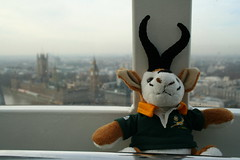 2006-02-18 London Eye (Dave Reinhardt) Tags: london springbok springboks bokke teddybok