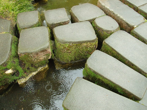 Stepping Stones In The Rain