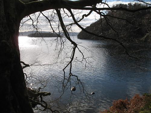 Loch Lomond_24