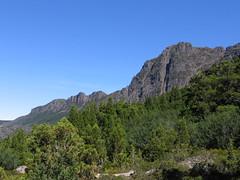 mar11 214 (The Walkabouters) Tags: mountain australia tasmania cradle