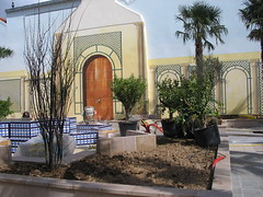 Puteaux, square Voltaire (Grbert) Tags: square voltaire palmier puteaux