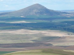 flickr11 (Tanner Grant) Tags: washington hiking palouse kamiakbutte steptoebutte