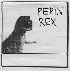 Pepín Rex - by Alícia