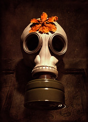 costume for a new millenium (e.palecek) Tags: apocalypse gasmask anidifranco suffocate
