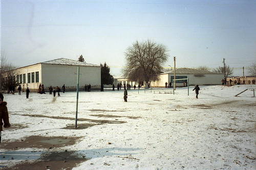 School 41
