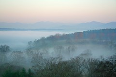 Blueridge fog (nealoneal) Tags: mountains fog nc asheville biltmore blueridge