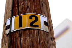 One more than* eleven; two and ten; twice six; a dozen. (beebo wallace) Tags: topv111 topv555 topv333 topv444 topv222 topv777 12 canon50mmf18 topv666 twelve shalliputitontheunderhillaccountseñor