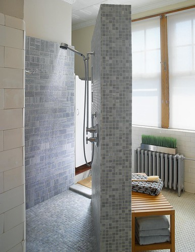 Corner Shower With Lots Of Space Bathroom Designs