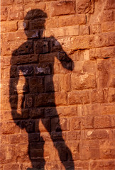 The shadow of David (_Zeta_) Tags: shadow italy sculpture david statue florence italia ombra tuscany firenze toscana michelangelo statua thewall ilmuro