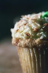 coconut cupcake for easter (cafemama) Tags: easter cupcakes coconut egg cupcake eggs eggcarton sarahgilbert saintcupcake stcupcake