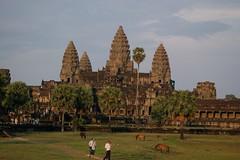 Angkor Wat @ sunset