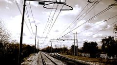 Rails 3 (pierofix) Tags: sky train cielo rails 169 atmosfera treno udine rotaie