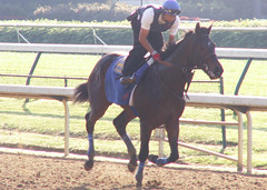 Bob And John (horsestohorsepower) Tags: horseracing oaks derby churchilldowns kyderby dawnatthedowns kyoaks morningworks