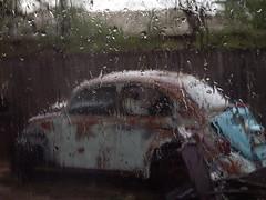 @ Rain loves rusty bugs (bubbly oubliette) Tags: rain bug meep b52s rocklobster rustybug therainintheplains rainbug rustyrain rainyrust tinroofrusted strangewordassociationtags rocklobsterreallyisthebestkaraoke