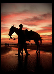 Another Day's Silent End (ali khurshid) Tags: pakistan sunset horse beach silhouette thanks spring karachi alikhurshid takk clifton impression beautifulday ilovethisplace 13thfebruary2006
