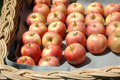 free apples from wild oats
