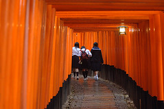 Torii Gates (wmchu) Tags: red japan temple spring kyoto shrine  cherryblossom  sakura itsongselection1 mirrorsofsociety kansai schoolgirls   fushimiinaritaisha nikond2x itsongmirrorsasia memoirsofageisha  toriigates itsongnikond2x