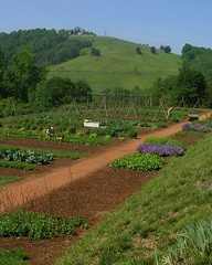 Thomas Jefferson's vegetable garden (Valerie Craig (Val Ann)) Tags: vacation usa vegetables garden virginia terrace gardening president may roadtrip 2006 va plantation jefferson charlottesville monticello slavery foundingfather valann americansouth fbaug08 valann422