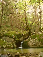Ikaria 201 (isl_gr (Mnesterophonia)) Tags: pool forest island waterfall rocks hiking beautyconcealed ikaria icaria  aegean may trails greece nymph planetrees hikingikaria  waterdreams mountaingorge riverpool    myrsonas  angelolivada angelspool joysoup
