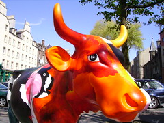 Coo (*sunchild*) Tags: cow parade