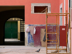 obras (*L) Tags: porto lisboa scaffold fav azulejo birdies columbalivia obras azulejos roupa andaime sacosdeplstico pombinho tbuas sortidos rdosacramento